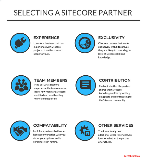selecting a sitecore partner infographic